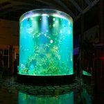 चीन कस्टम सस्ते सुपर ठूलो दौर pmma ग्लास एक्वैरियमहरु स्पष्ट सिलेंडर एक्रिलिक माछा टैंक