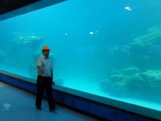 एक्वैरियम, महासागरियम को लागि दीवार को यूवी ऐक्रेलिक प्यानल कास्ट गर्नुहोस