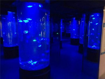 ऐक्रेलिक जेलीफिश एक्वैरियम टान्को ग्लास